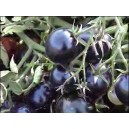 Natural Blue Tomato Seed(Packet 20 seeds)