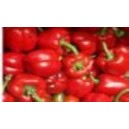 Natural Very Hot Emigrant Pepper Seed(20 seed)