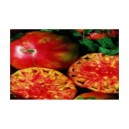 Natural Flame Tomato Seed(20 seed)