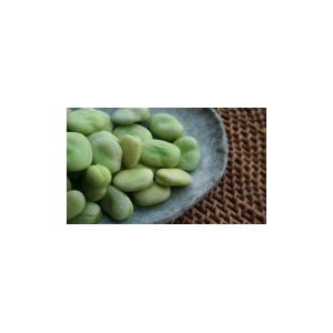 Natural Broad Bean Seed(25 seed)