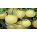 Natural White Cherry Tomato Seed(20 seed)