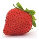 Arzuman Strawberry Seed(100 seed)