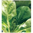 Arzuman Spinach Seed(25 gram)