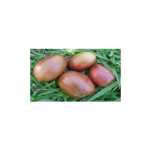 Natural Purple Russian Tomato Seed(20 Seed)