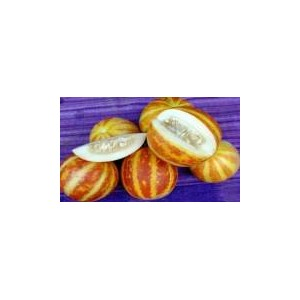 Natural Perfume Melon Seed(20 Seed)