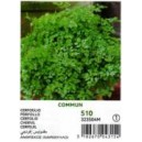 Vilmorin European Parsley Seed