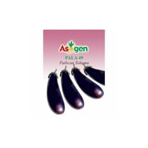 Asgen Special Pala49 Eggplant Seed(5 gram)