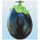 Special Topan Eggplant Seed(10 gram)