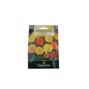 Vilmorin Big Head Marigold Flower Seed