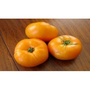 Natural Golden Jubile Tomato Seed(20 seed)