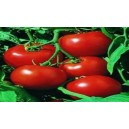 Natural Rudgets Tomato Seed(20 seed)