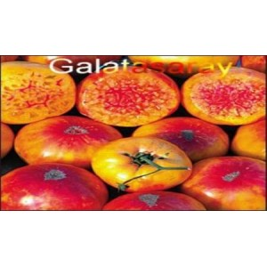 Natural Yellow&Red Tomato Seed(20 seed)